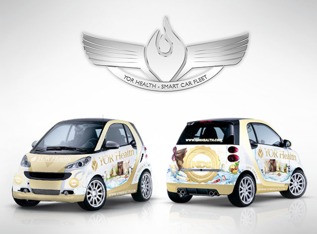 2012 Smart Car Banner