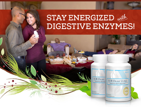 Digestive Enzymes Holiday Banner