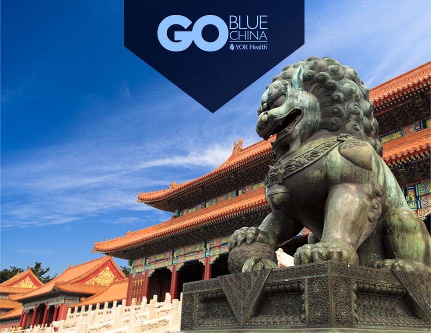 Go Blue China Bottom