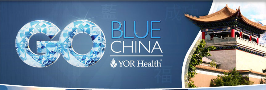 Go Blue China Top